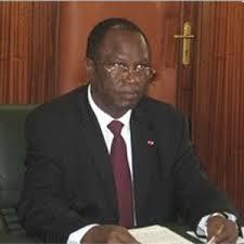 Hélé Pierre, Ministre camerounais de l'environnement de du développement durable